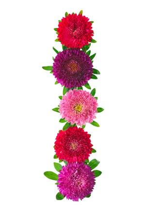 floral alphabet isolated on white background. letter I Stock Photo - 7849632