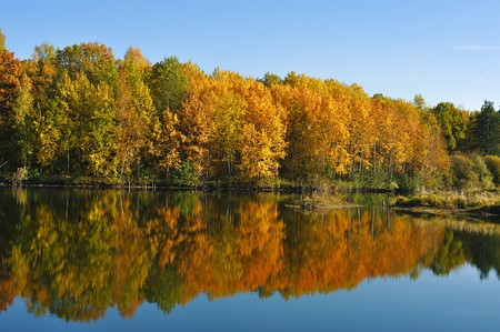 autumn colorful trees reflecting in blue  calm lake water photo