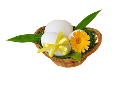 Easter eggs in basket with flower on white background Stock Photo - 8778361