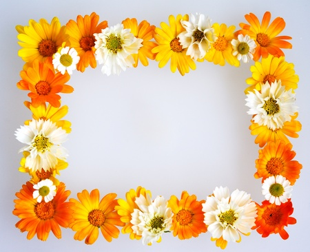 colorful floral frame isolated on white background Stock Photo - 8994482
