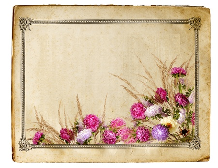 sheet of old yellowed paper with floral frame isolated on white background