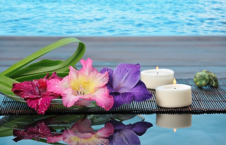 spa still life with lily on blue background photo