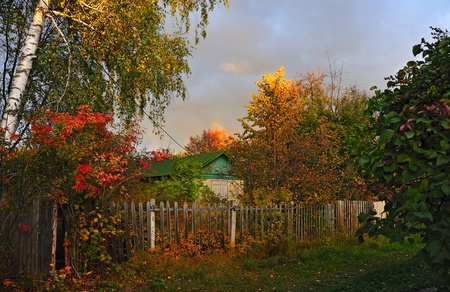 gleam of  sunset on autumn colorful trees in village photo