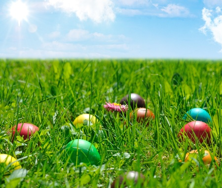 egg hunt: colorful easter eggs in green grass