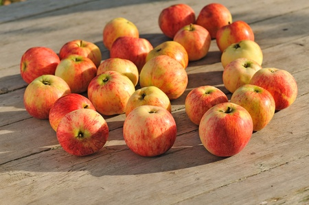 maturation: apples on wood surface