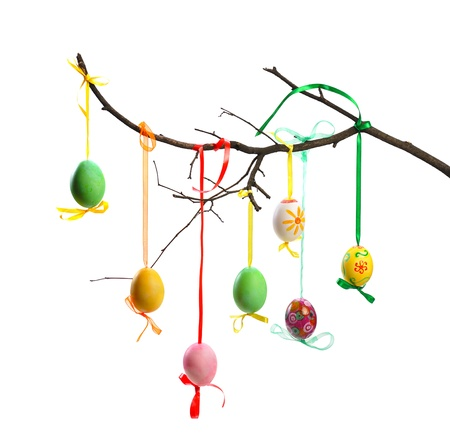 colorful easter eggs hanging on  branch  isolated  on white background photo
