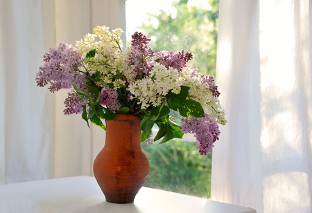 bunch of lilac in ceramic jug against summer window photo