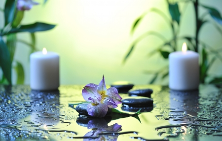 spa still life with flower and white burn candles on wet background photo