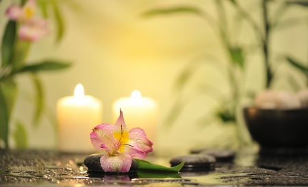flower and burn candles on wet background Stock Photo - 18087624