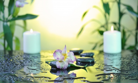 flower and burn candles on wet background photo