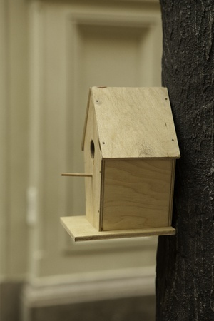 impart: Wooden starling house on a tree for birds
