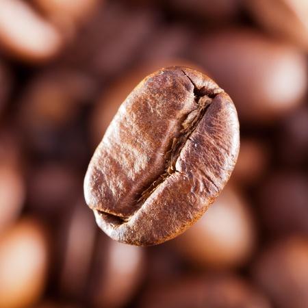 Macro image of coffee-bean photo