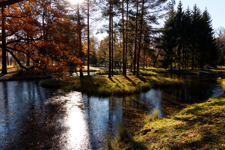 The Autumn park in St. Petersburg