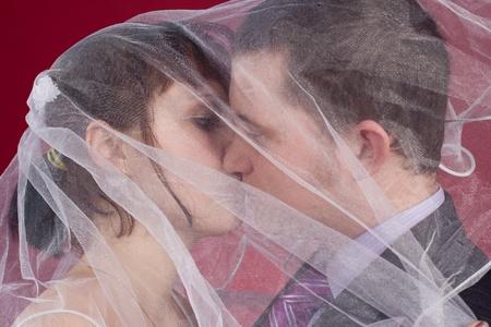 Kissing Couple newlyweds behind wedding veil photo
