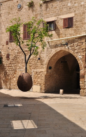 yaffo: Colgando Naranjo en Jaffa.Israel.  Foto de archivo