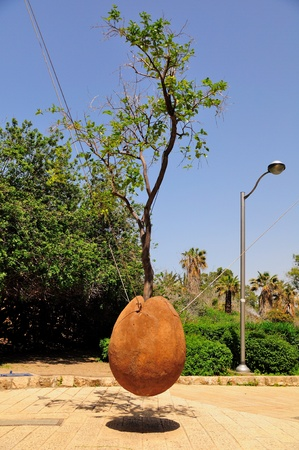 Hovering Orange Tree. Jaffa. Israel. Stock Photo