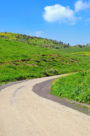 Road turn. Galilee. Nothern Israel.  Stock Photo - 10100141