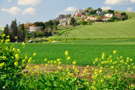 View of a settlement built on the hill  Northern Israel