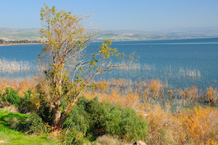 View of Kinneret lake and Galilee landscape  Nothern Israel   Stock Photo