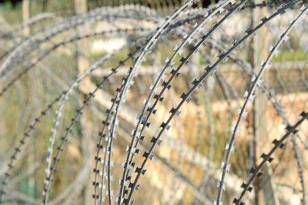 Barbed wire fence  Israel  photo