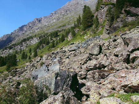 to altai: Highland Altai, mountain Altai, August, 2010 40 Stock Photo