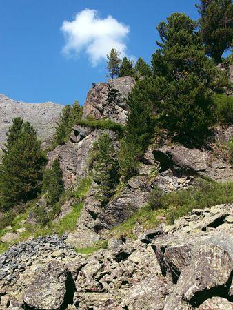 to altai: Highland Altai, mountain Altai, August, 2010 41 Stock Photo