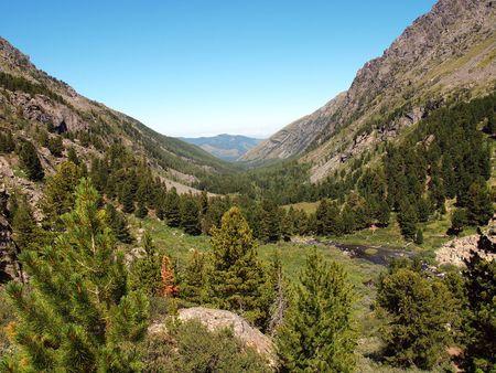 to altai: Highland Altai, mountain Altai, August, 2010 81