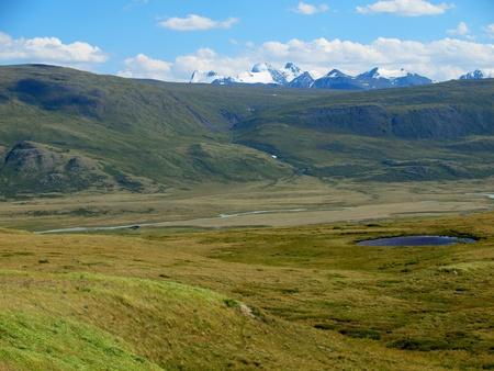 to altai: Plateau Ukok, mountain Altai
