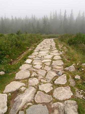 empedrado: Carretera de monta�a a las monta�as de Tatra          Foto de archivo