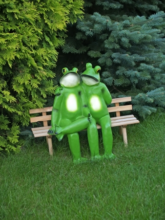 enamoured: Enamoured frogs on a bench in park