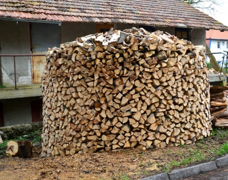 Round woodpile of birch firewood