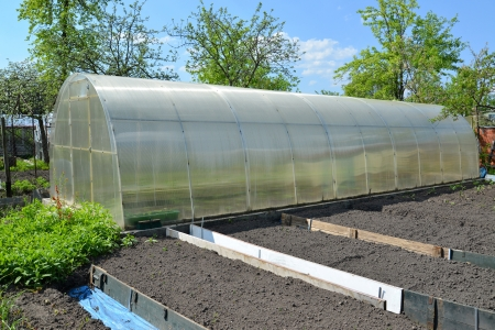 The greenhouse from cellular polycarbonate on a country section