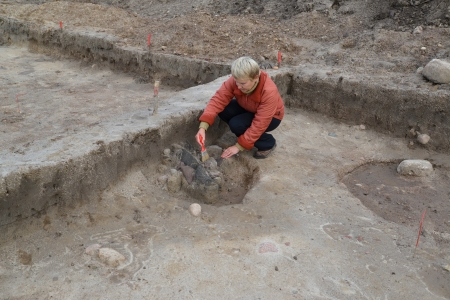 archeologist: The female archeologist works at excavation with the ancient center