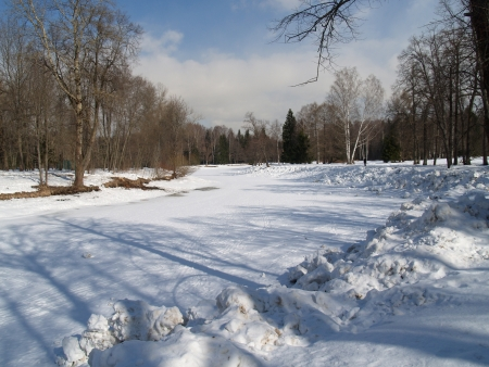 Pavlovsk  Winter park photo