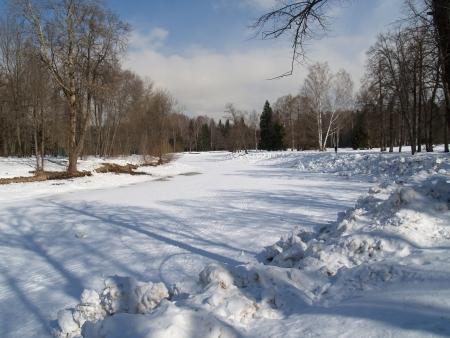 Pavlovsk  Winter park Stock Photo - 23447086