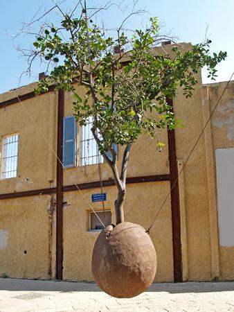 yaffo: El naranjo suspendido Yaffo, Israel Foto de archivo
