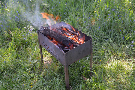 The brazier with burning firewood costs on a grass photo