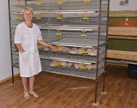 The female farmer stands near a cage with quails photo