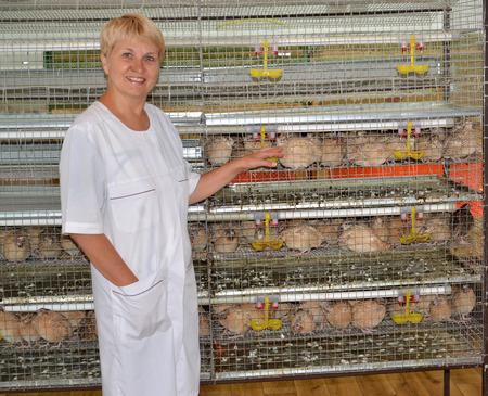 The joyful female farmer shows on a cage with quails photo