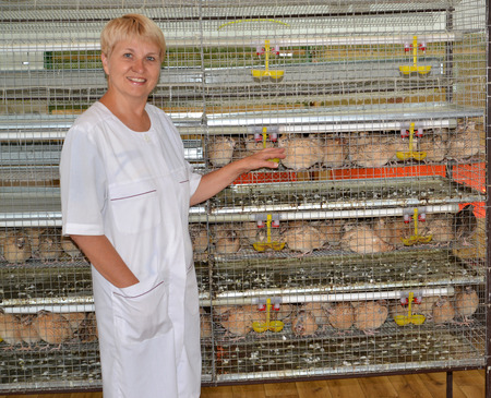 The joyful female farmer shows on a cage with quails photo