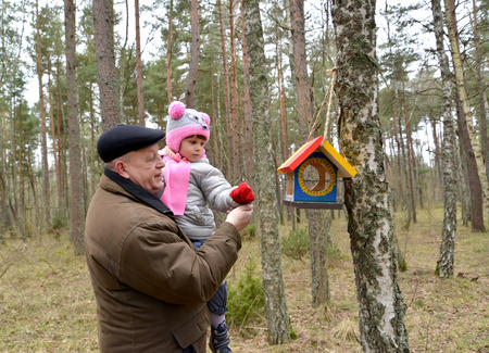 50 to 55 years: The elderly man with the granddaughter put grains in a birds feeder.Family