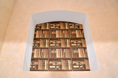 book racks: Imitation of a book rack in a niche. Interior fragment