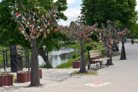 """gusev: """"Un albero felicit�"""" sul terrapieno"""