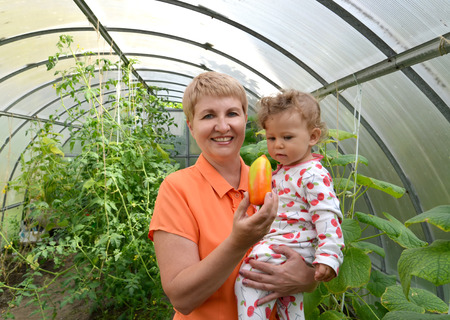 50 to 55 years: The woman shows to the little granddaughter sweet pepper in the greenhouse