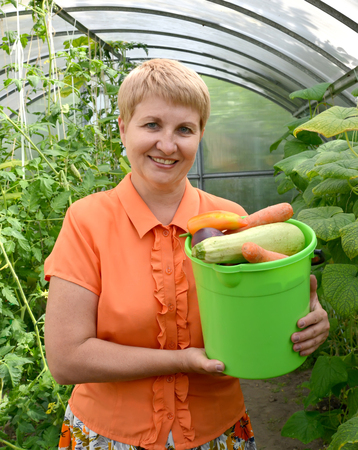50 to 55 years: The woman of average years holds in hand a bucket with vegetables in the greenhouse Stock Photo