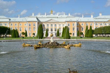 peterhof: PETERHOF, RUSSIA - JULY 24, 2015: Oak fountain and Grand Peterhof Palace. Top garden