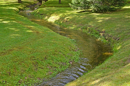proceeds: The stream proceeds through park. Summer landscape