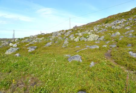 lejos: Pedregosa ladera de una colina en la tundra. Península de Kola