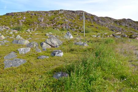 stony: View of a stony hill in the tundra. Kola Peninsula