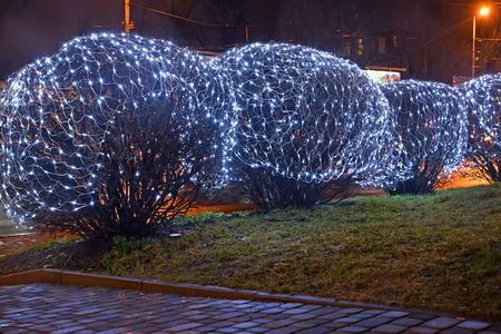 led lighting: KALININGRAD, RUSSIA - Decorative illumination of bushes late evening